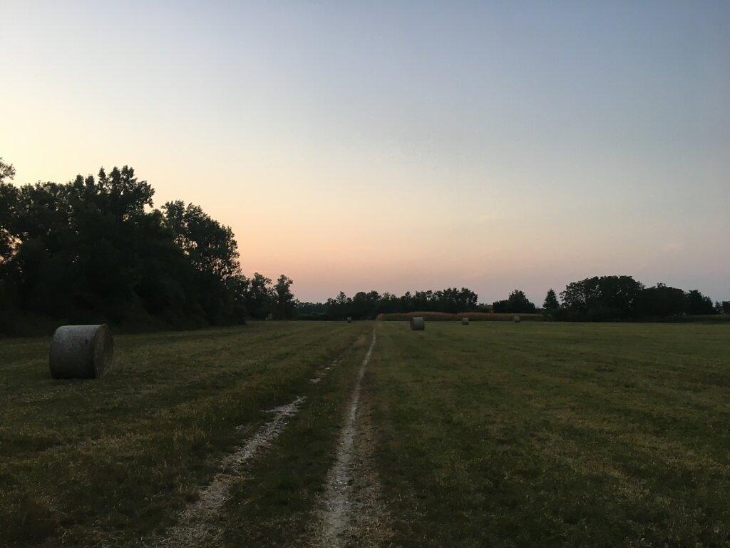 22.08.2018 Morgens entlang der Piave