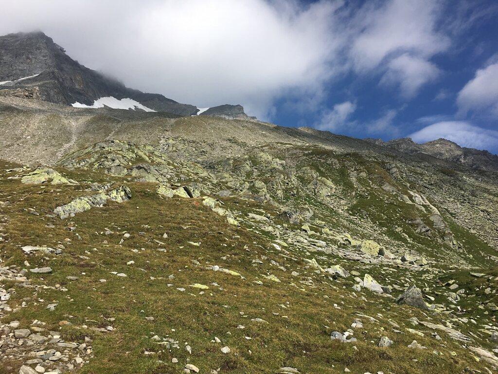 09.08.2018 Gelber Berge?