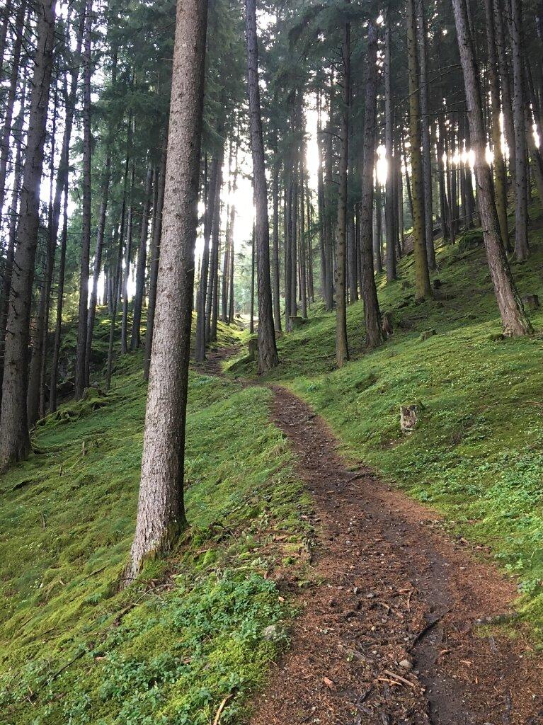 11.08.2018 Bergwärts