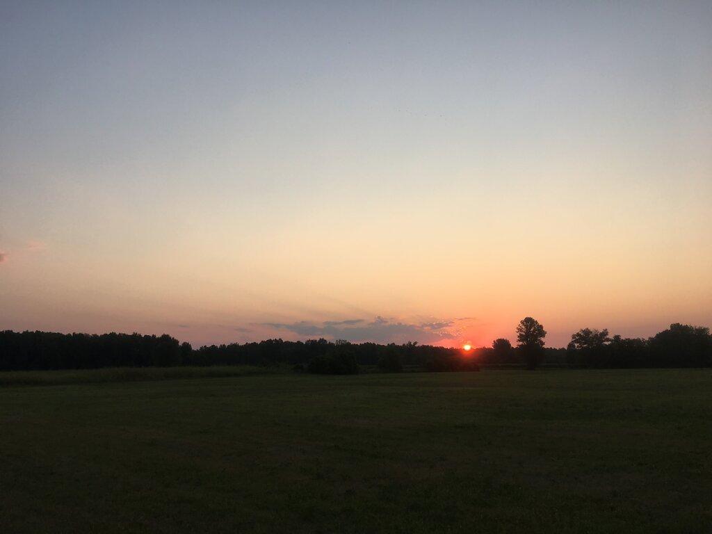 22.08.2018 Die Sonne kommt dazu...