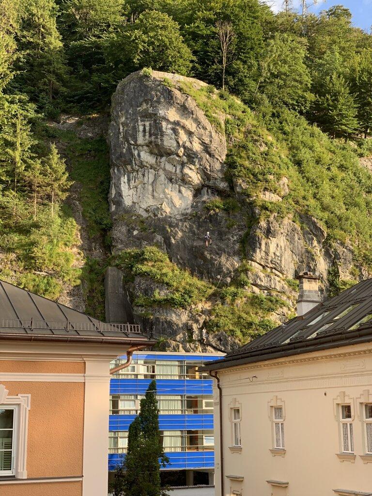 02.08.2021 Bergziegen vor dem Hotelfenster