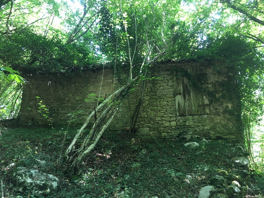 20.08.2018 Ruine kurz vor Revine