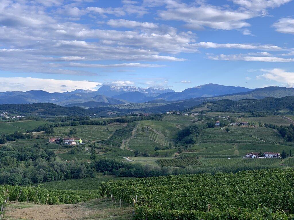 29.08.2021 Wein und Berge